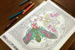 Coloring Book Club